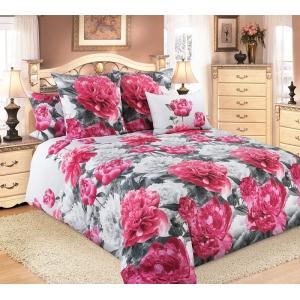 Постельное белье Текс-Дизайн Пионы (2 спальное, бязь)